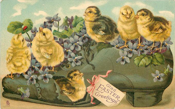 Vintage Easter images - printable Tuck postcard image - chicks in shoe