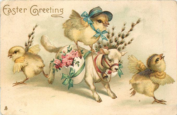 Vintage Easter images - printable Tuck postcard image - chicks on lamb