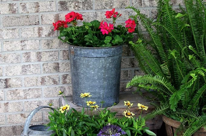Ditch The Urns: Creative Garden Containers For Your Porch