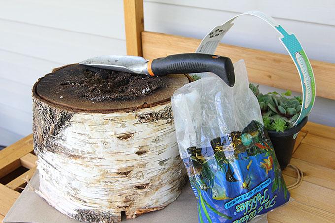 Natural log planter
