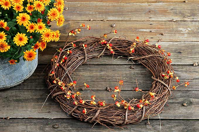 Making a fall wreath from Michaels