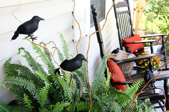 Halloween porch ideas using ravens