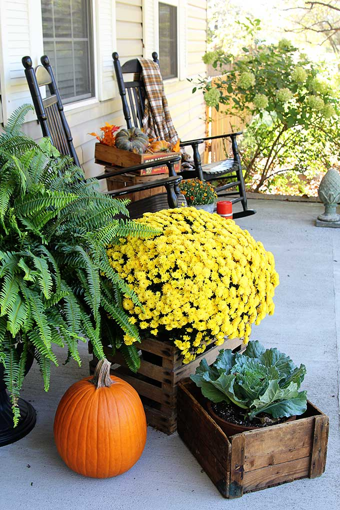 Traditional farmhouse front porch fall decor