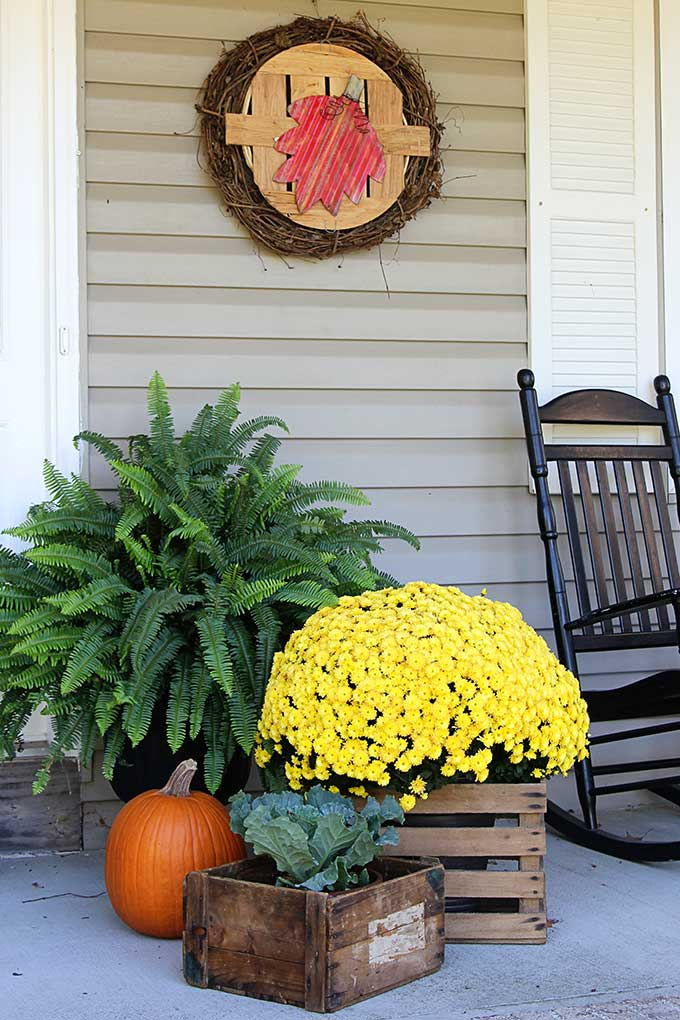 Fall front porch ideas using mums and pumpkins