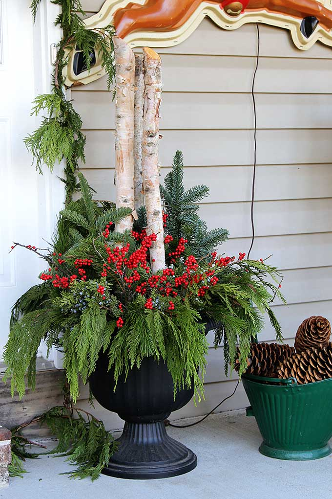 Christmas porch urn with Birch branches and Winterberry