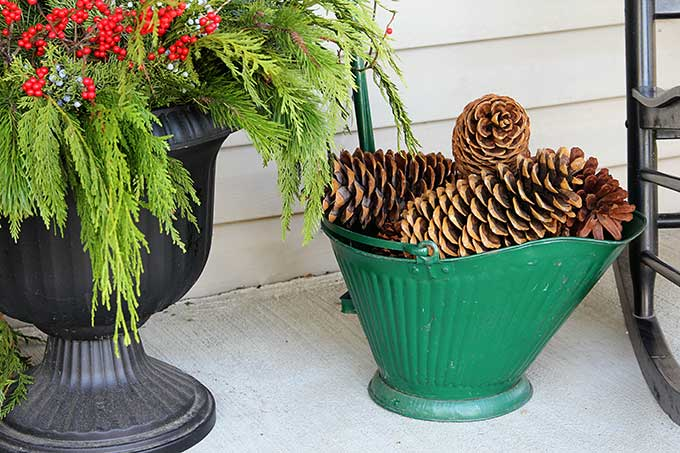 Coal bucket used as holiday porch decor
