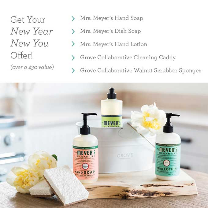 Mrs Meyer's cleaning set FREE with additional purchase from Grove Collaborative. I am addicted to the lemon verbena scent!!!