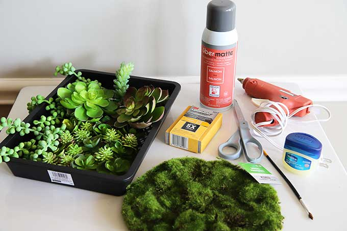 Supplies for creating an artificial succulent garden