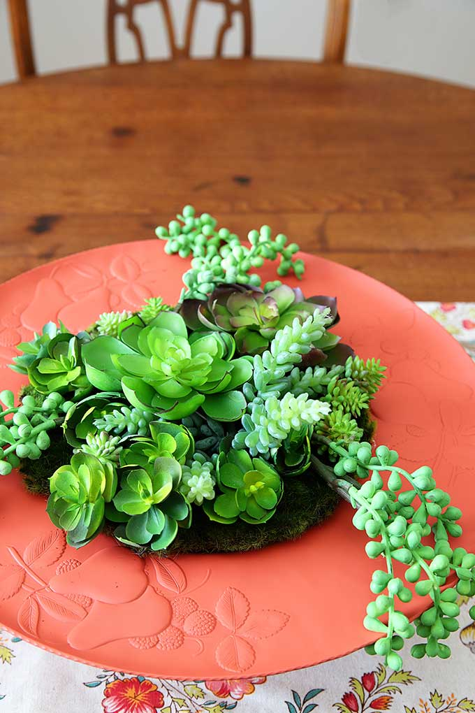 Succulent garden made out of upcycled thrift store serving tray