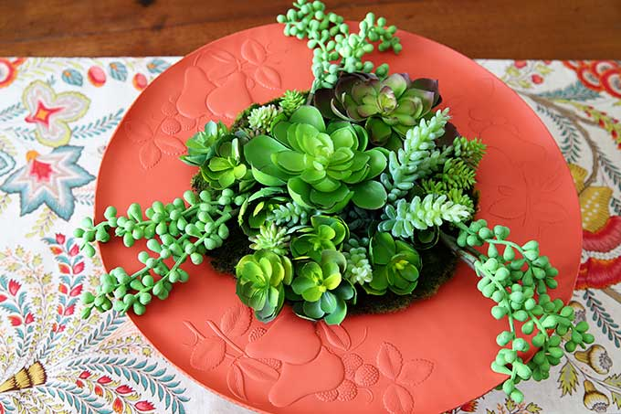 Upcycled thrift store tray into boho succulent garden