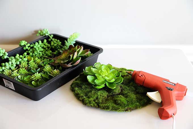 Using artificial succulents