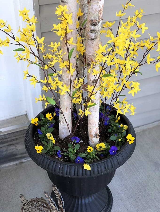 Easy 5 Minute Spring Porch Pot Refresh