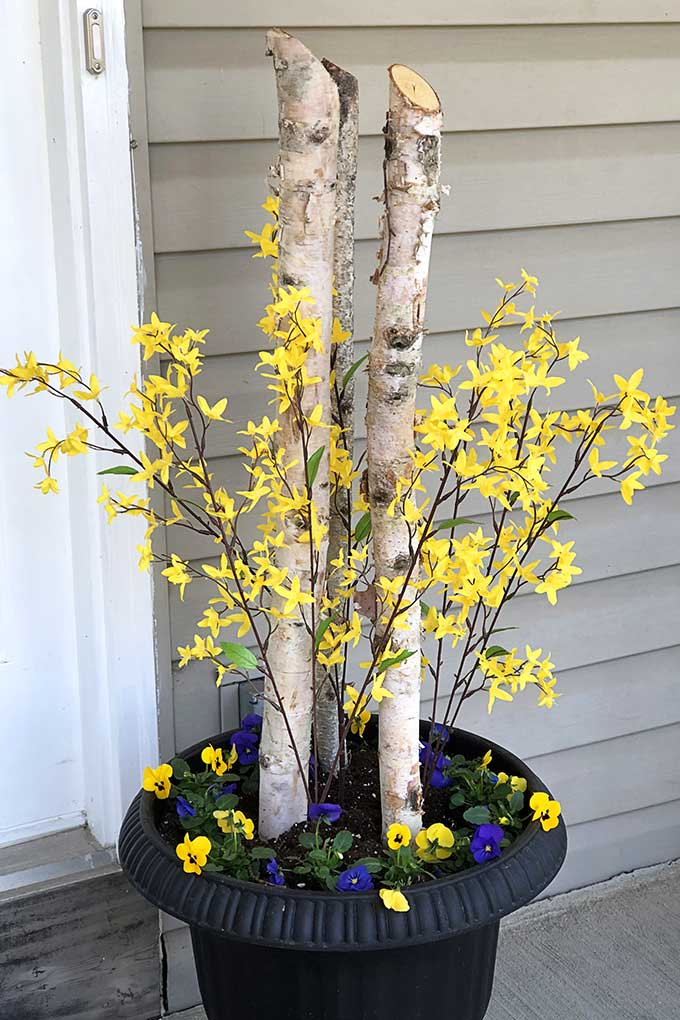 Quick and easy spring porch pot inspiration for transforming your tired winter pots to beautiful spring porch decor. A great front porch decorating idea on a budget!