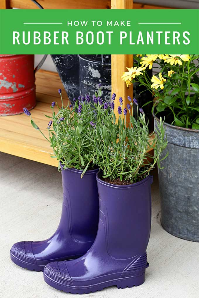 Learn how to make super cute garden planters out of old rubber boots (rain boots and wellies will work just as well). Boot planters are a great upcycled planter idea! #gardenart #gardenjunk #recycled #upcycle #repurposed #DIYproject