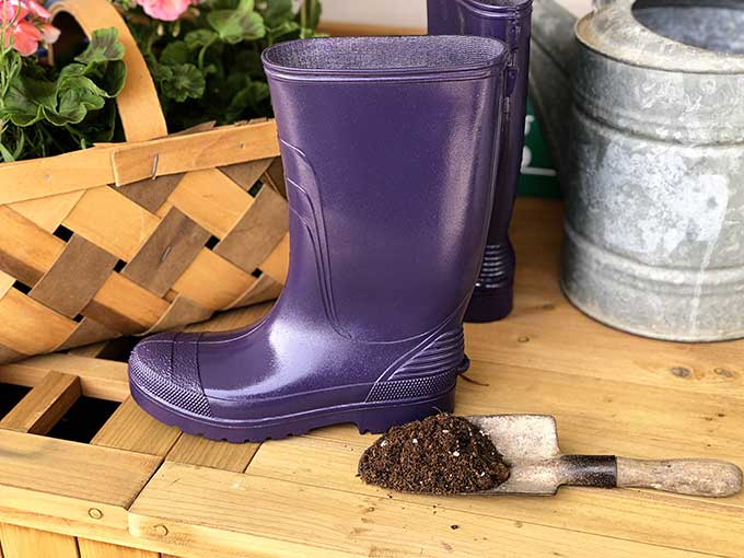 Filling rubber boots with potting soil for rain boot planters