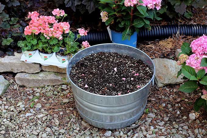 Preparing soil for container gardening
