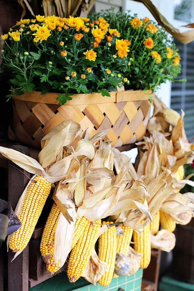 Corn garland for fall home decor.