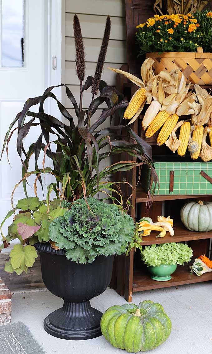 Foliage planter for fall.