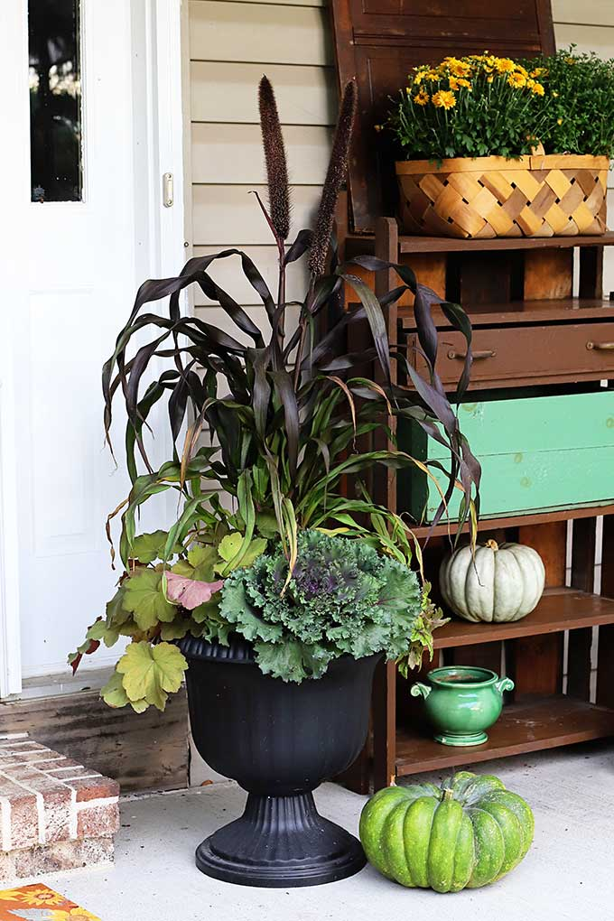 Tired of just throwing baskets of mums on your fall porch and calling it a day? Learn how to make a GORGEOUS colorful fall foliage planter for your porch!