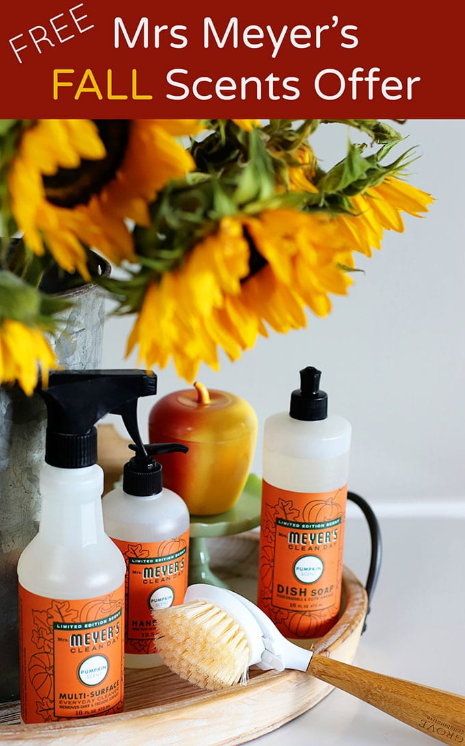 Mrs Meyer's FALL cleaning set FREE with additional purchase from Grove Collaborative. Your choice of pumpkin, apple cider or mum scented cleaning supplies! It's time to get your fall on!