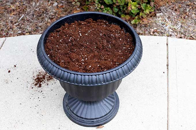 Filling flower pot with soil.
