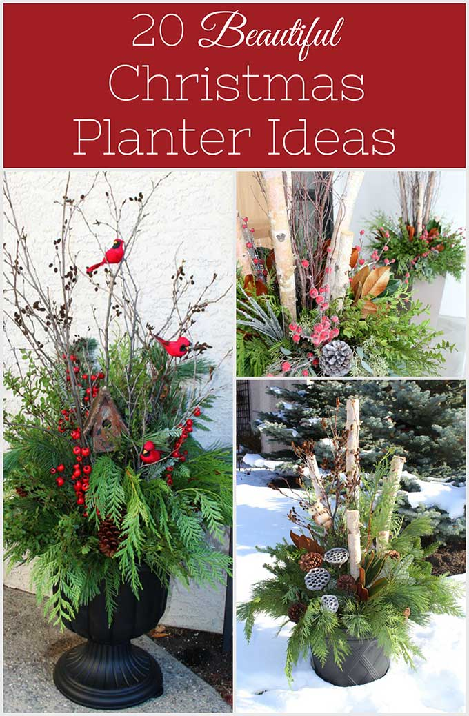 20 Beautiful Winter Planter Ideas - House of Hawthornes