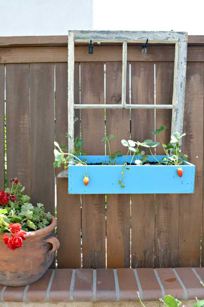 Repurposing window into planter