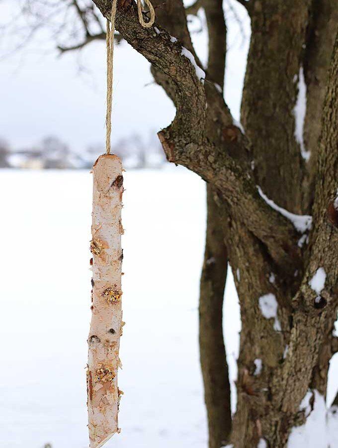 Rustic Log Bird Feeder DIY