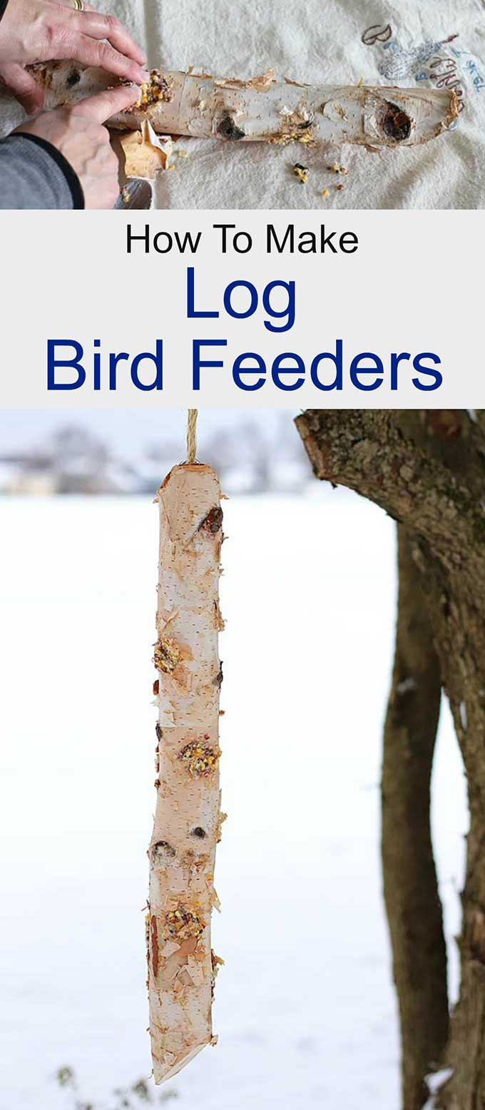 Simple suet log bird feeder DIY project to feed the birds for the winter months. Quick and easy to make and the birds will love it!
