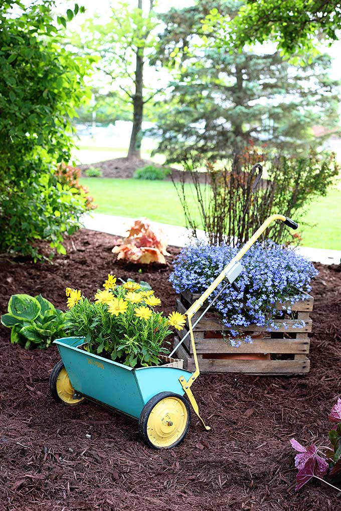 Vintage seed spreader repurposed as a planter