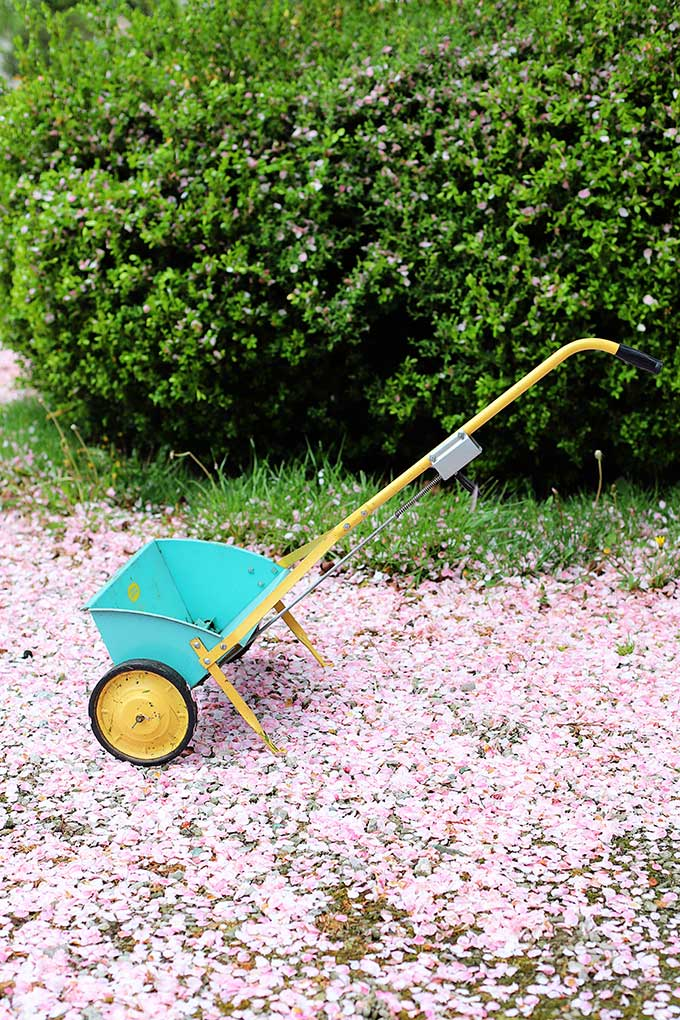Vintage Cross Country Seed And Fertilizer Spreader from Sears Roebuck