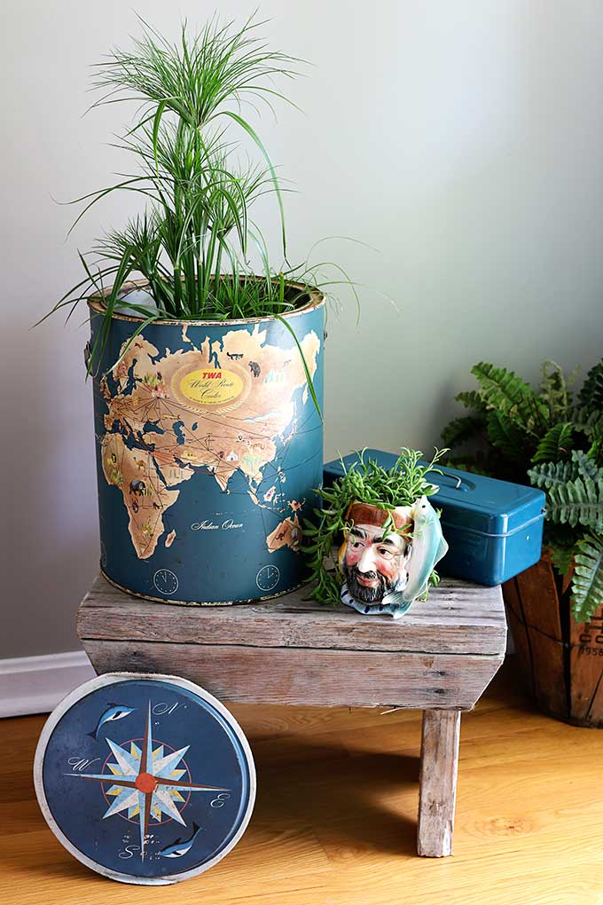 Repurposed thrift store finds used as planters