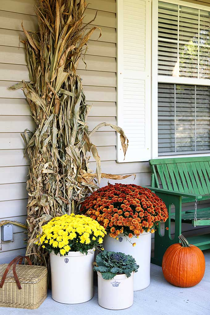 Cornstalks and mums for fall porch decor