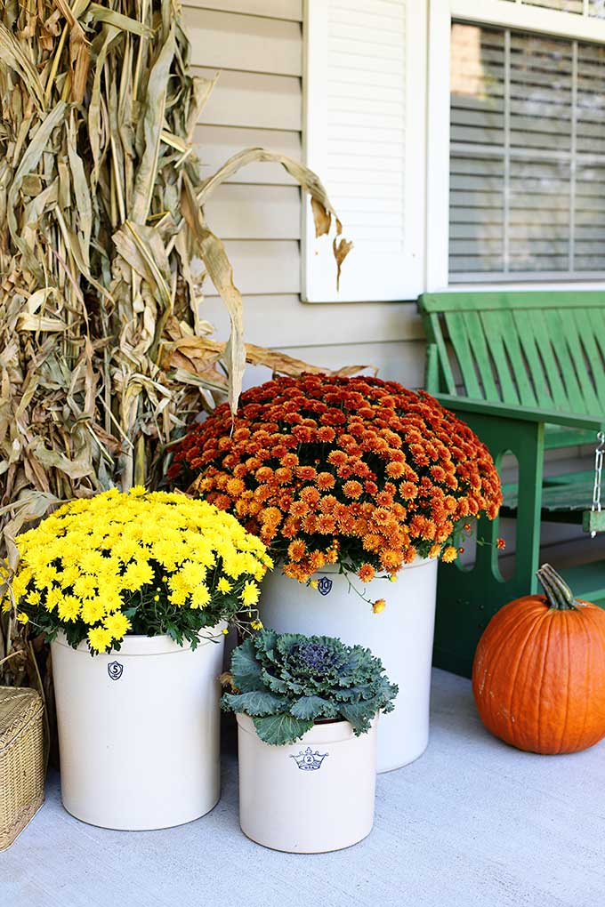 Vintage crocks and mums on fall porch