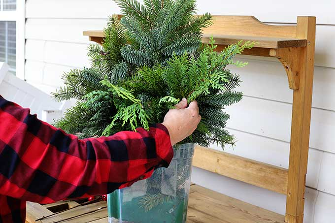 using Cedar in Christmas decor