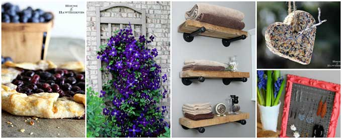 The most popular articles from House Of Hawthornes including DIY Projects, Gardening and Recipes.