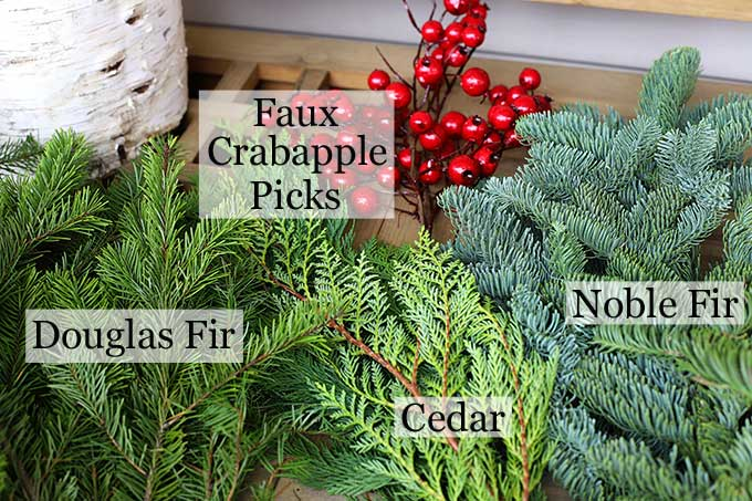 types pf pine branches for holiday decor