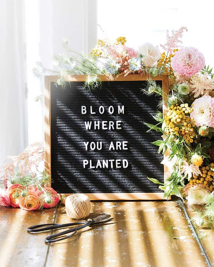 Letter board quote for spring