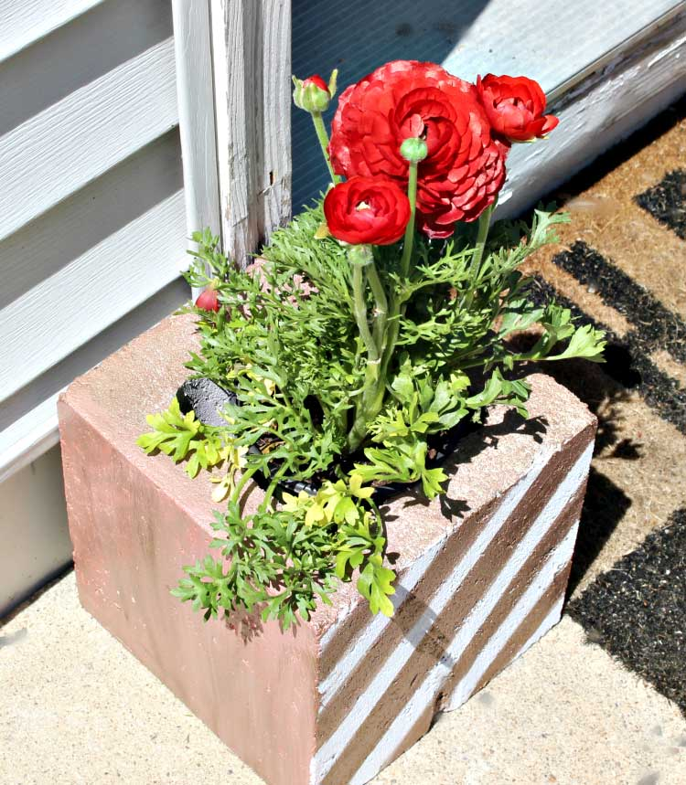 repurposed cinder block planter