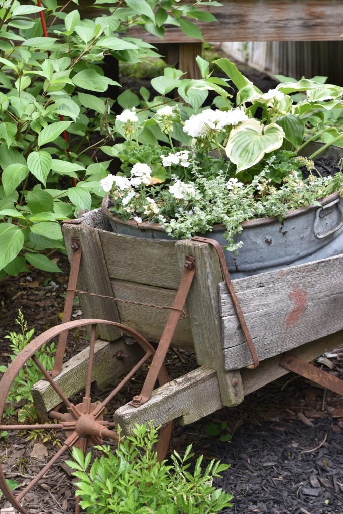 washtub-planter
