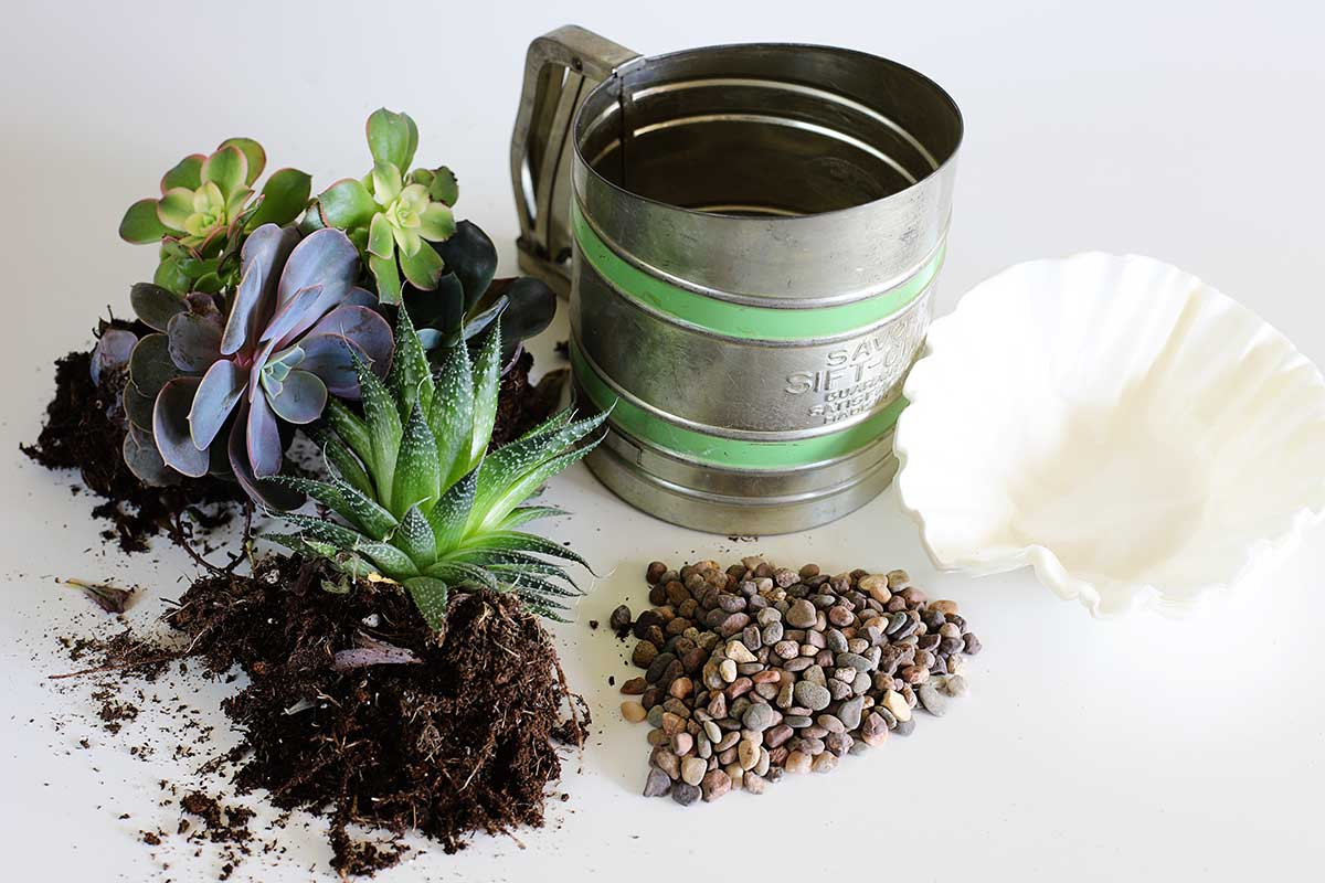 supplies to repurpose flour sifter into planter for succulents