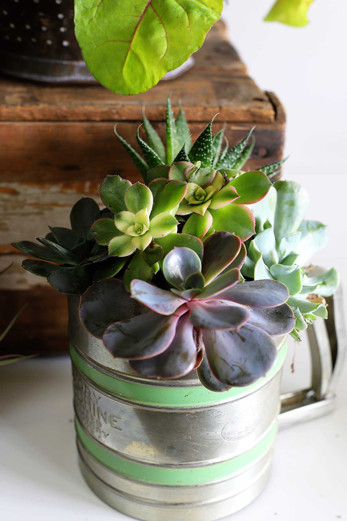vintage kitchen tools repurposed into planters