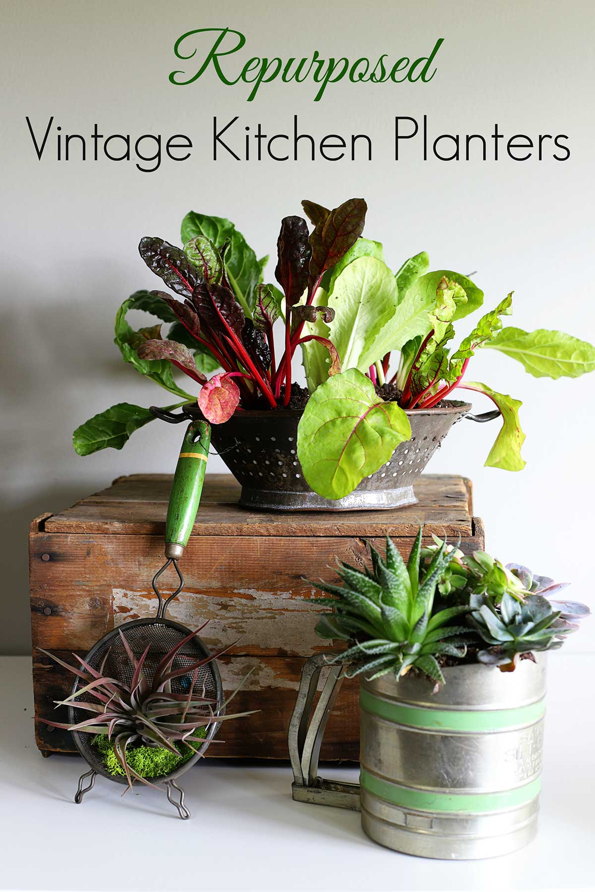 Repurpose kitchen utensils