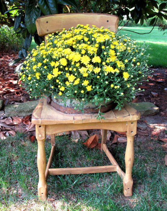 Fall porch planter from chair with yellow mums