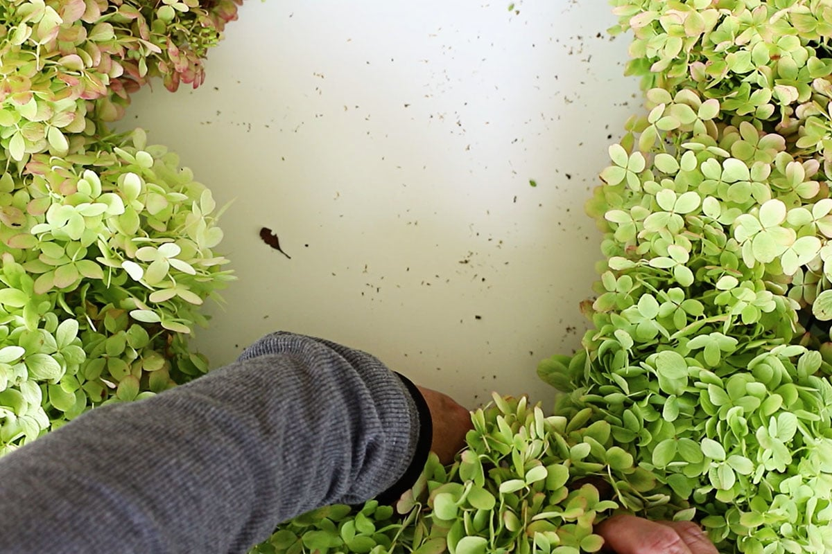 finishing hydrangea wreath