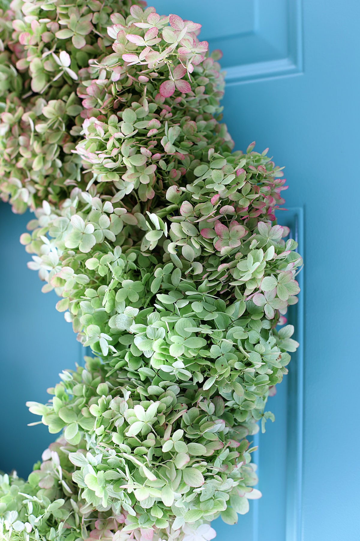 Limelight Hydrangea wreath close up