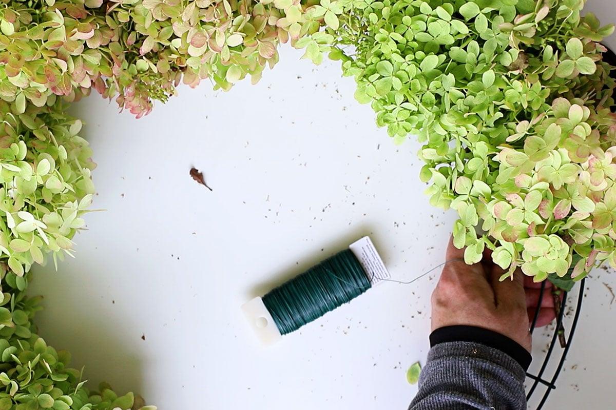 tying hydrangea blooms onto wreath form