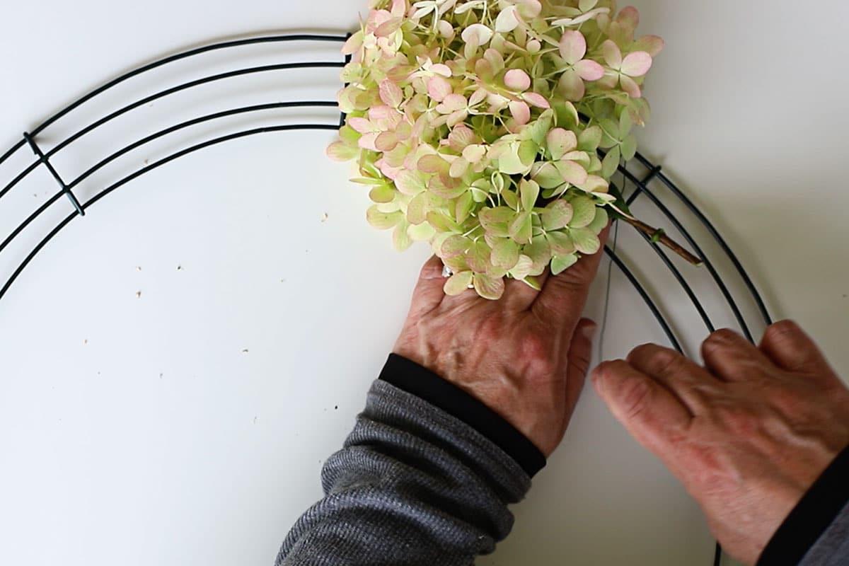 creating hydrangea wreath