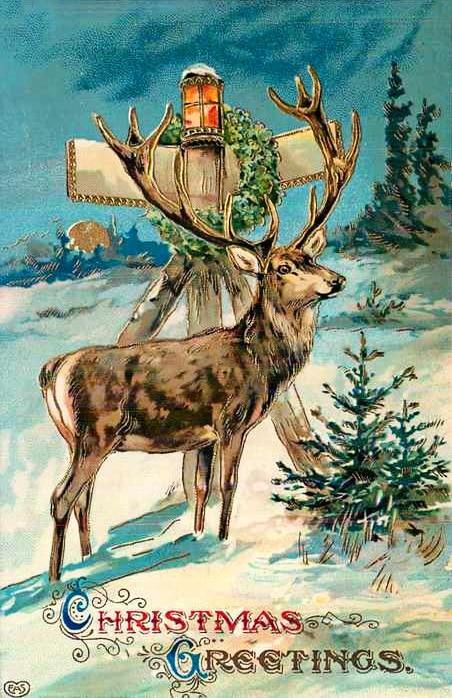 vintage Christmas postcard with deer