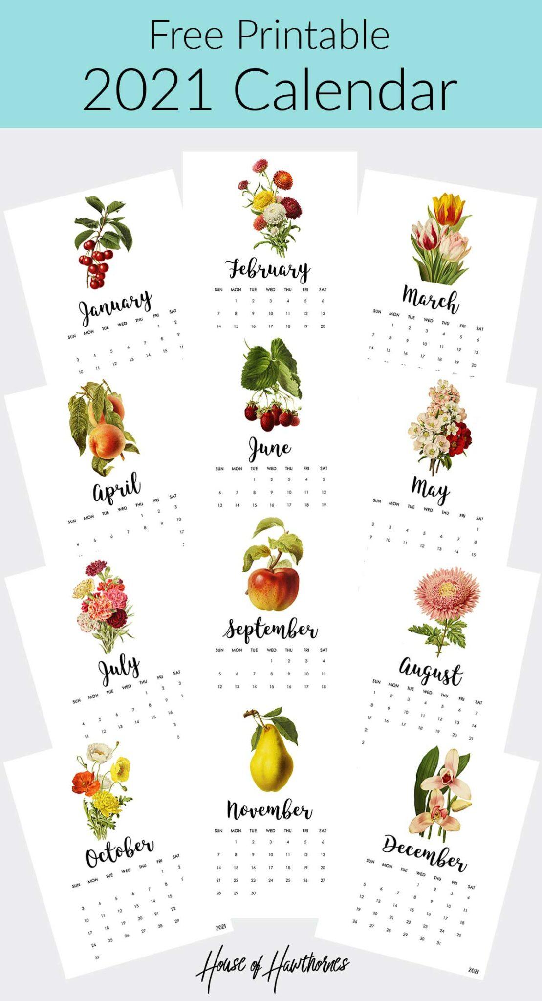 free printable 2021 calendar with vintage botanical illustrations
